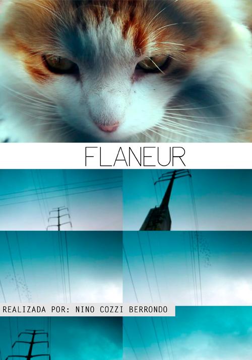 flaneurchido